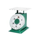 Large Automatic Scale