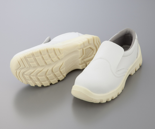 ASPURE Electrostatic Safety Shoe TCSS