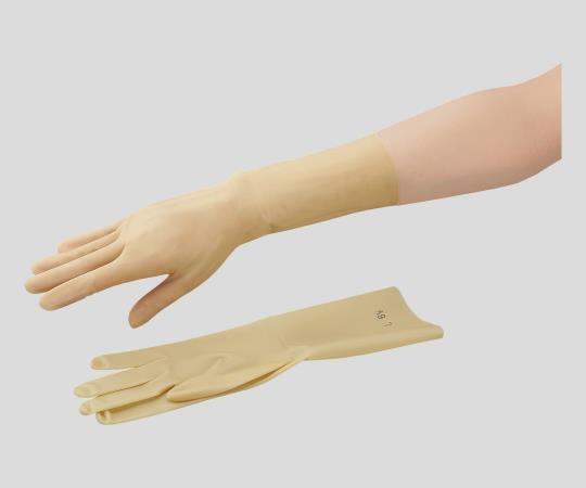 Latex Gloves (Ansell No Powder)