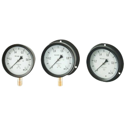 Sealed Type Pressure Gauge (ø100)