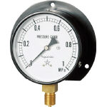 General Vibration Proof Pressure Gauge (B Type Vertical Type / ø75)