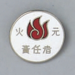 "Badge ""Fire Officer"""