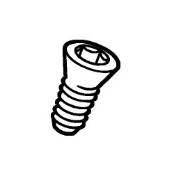Sandvik Tip Screw