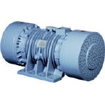 Vibrator (8-Pole 3-Phase Induction Motor)