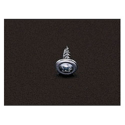Iron Plate Screw with Washer (100 Pcs) EA949AA-4