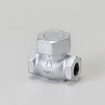 Malleable Valve, 20K Type, Check Valve (Lift Type), Screw-in, Equipped with PTFE Disc