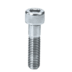 Socket Head Cap Screws/Stainless Steel