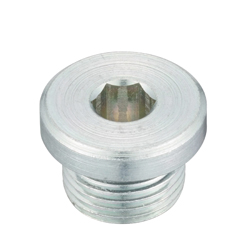 Flanged Hex Socket Head Screw Plug_SPN-L