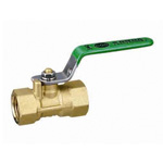 Ball Valve, FS Type, Green Lever Handle