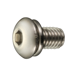 Hex Socket Button Head Cap Screw P=2 (SW)
