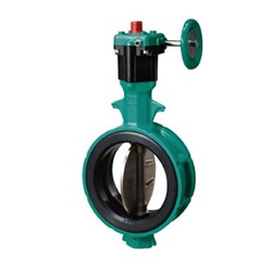 Butterfly Valve 700Z Worm Gear